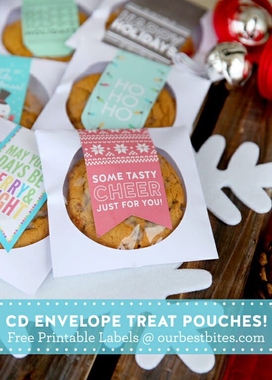 Brilliant idea to use CD envelopes for treat pouches from Our Best Bites!