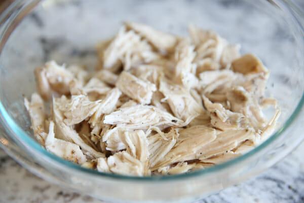 our best bites shredded chicken
