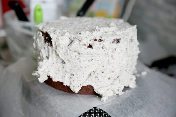 Messy Frosted Cake