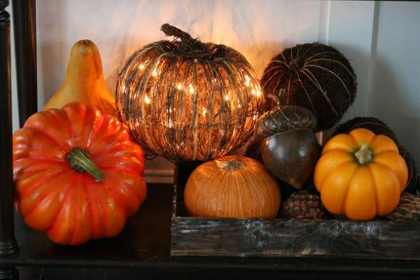 Our Best Bites_Halloween Gourds