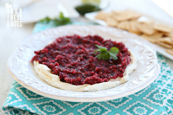 Our Best Bites Cranberry Salsa Dip