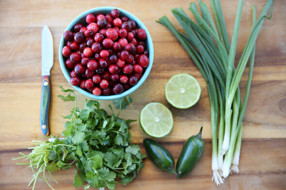 Our Best Bites Cranberry Salsa Ingredients