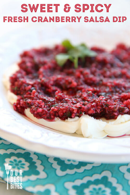 Sweet and Spicy Cranberry Salsa Dip from Our Best Bites